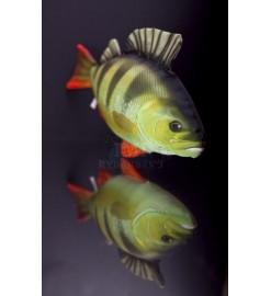 Plyšová ryba OSTRIEŽ 50cm